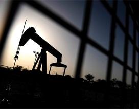 """Giá dầu giảm - """"Thiên đường"""" sẽ rơi nước mắt?"""