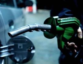 Giá dầu thế giới lại xuống đáy mới