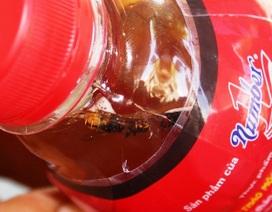 Phát hiện 6 chai nước dán nhãn Dr Thanh có ruồi, cỏ, rác, lông...