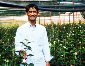 Thu 7 tỷ đồng mỗi năm nhờ trồng hoa hồng