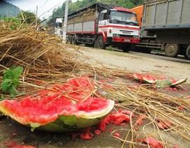 Nông sản bí đầu ra, đừng trách nông dân!