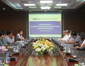Đề xuất thành lập Quỹ khuyến khích tài năng bơi lội trẻ Việt Nam mang tên Ánh Viên