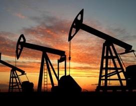 Doanh thu dầu của OPEC tụt dưới ngưỡng 1 nghìn tỷ USD