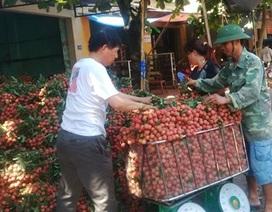 Thương lái Trung Quốc ngừng mua: Vải Lục Ngạn rớt thảm còn 4.000 đồng/kg