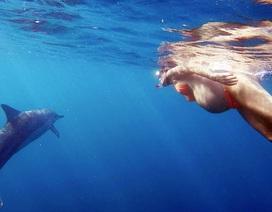Quyết sinh con dưới biển dù được cảnh báo nguy hiểm
