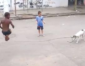 Chó thông minh quất dây cho trẻ con nhảy