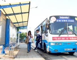TPHCM: Mở thêm tuyến buýt vào sân bay Tân Sơn Nhất