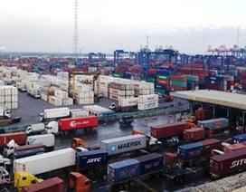 Đề nghị cảng Cát Lái di dời hàng trăm container hóa chất nguy hiểm