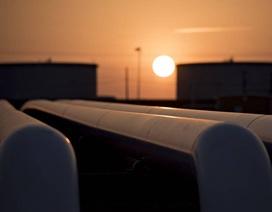 Giá dầu lao dốc: Chính phủ chỉ đạo tăng các khoản thu ngoài dầu thô