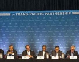 """Trưởng đoàn Đàm phán TPP: """"Việt Nam đủ sức tiến vào cuộc chơi mới này!"""""""