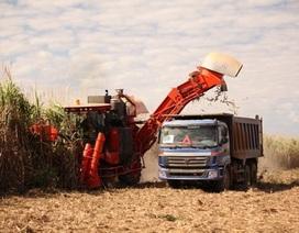 Thừa nhận khó khăn, công ty của bầu Đức xin cơ chế nhập đường từ Lào