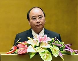 """Thủ tướng: Chúng ta cần phải suy nghĩ về """"bài học"""" Formosa để lại"""
