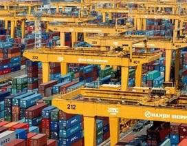 """Doanh nghiệp xuất khẩu """"mất ngủ"""" vì đại gia vận tải biển phá sản"""