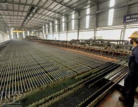 """Chuyên gia kinh tế: """"Nếu không làm thép, không có công nghiệp hoá"""""""