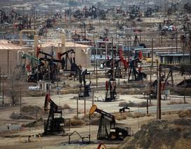"""Chỉ có Mỹ mới """"cứu"""" được giá dầu?"""