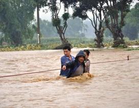 Hơn 10 cơn bão năm 2014 gây thiệt hại 2.380 tỷ đồng