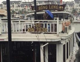 """Đình chỉ đội tàu """"chặt chém"""" khách trên Vịnh Hạ Long"""