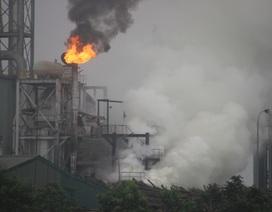Lại cháy lớn tại nhà máy gỗ