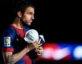 """Man United tính """"câu"""" Cesc Fabregas"""
