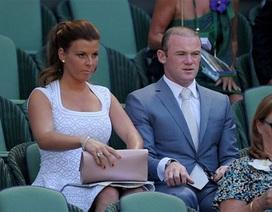 """Wayne Rooney cùng hàng loạt các """"sao"""" đi cổ vũ cho Murray"""