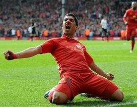 Vì sao Suarez xứng đáng là tiền đạo số 1 Premier League?