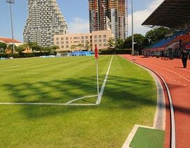Mặt cỏ tuyệt đẹp trên sân Bishan