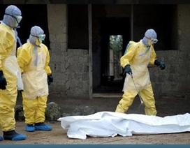 Thử nghiệm test phát hiện nhanh Ebola gấp 6 lần bình thường