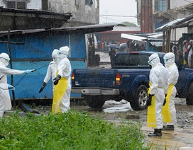 Hai vắc xin Ebola thử nghiệm đều an toàn