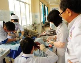 Đà Lạt: Thông gãy trong bệnh viện, 4 người bị thương
