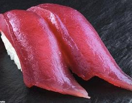 12 món ăn nguy hiểm nhất thế giới