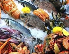 WHO: Ngày càng gia tăng mối đe doạ từ thực phẩm không an toàn