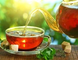 Lợi ích sức khỏe của các loại trà