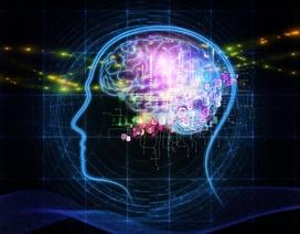 Thông thạo nhiều ngôn ngữ giúp não bộ nhanh nhạy hơn