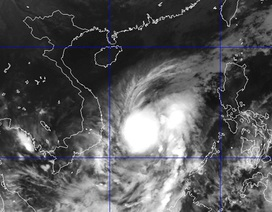 Chiều nay tâm bão số 4 quét vào ven biển Bình Định - Khánh Hòa