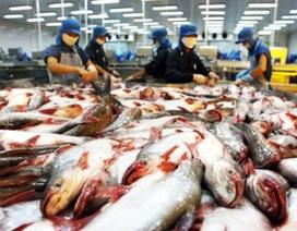 Mỹ giảm thuế chống bán phá giá với cá tra Việt Nam
