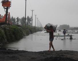 Trận mưa lũ lịch sử là bài học lớn cho ngành than Quảng Ninh