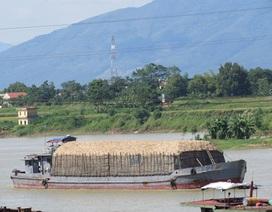 """Tàu chở gỗ dăm """"lặc lè"""" tấp nập trên sông"""