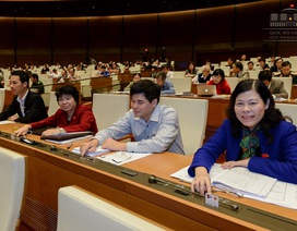 Quốc hội thông qua Công hàm thỏa thuận về cấp thị thực Việt Nam - Hoa Kỳ