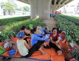 """Chui xuống """"lòng đất"""", ẩn dưới gầm cầu trốn nắng 40 độ C ở Hà Nội"""