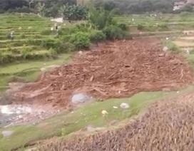 Hãi hùng chứng kiến dòng lũ cuồn cuộn đổ về Sơn La