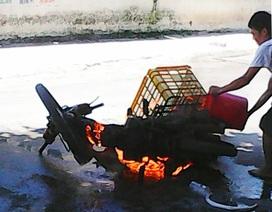 Hà Nội: Xe máy dựng bên đường bỗng bốc cháy dữ dội