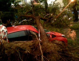 """Mưa giông lớn """"càn quét"""" Hà Nội, cây xanh đổ la liệt, giao thông hỗn loạn"""