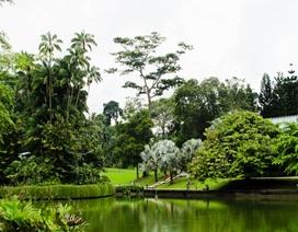 """Những thiên đường nghỉ dưỡng và """"thiền"""" ở châu Á"""