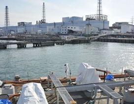 Nhà máy điện hạt nhân Fukushima sẽ đón khách đến tham quan