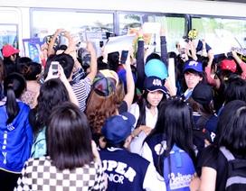 Khán giả Việt phấn khích vì sự xuất hiện của dàn sao Hàn