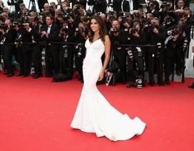 """""""Sao"""" phim """"Những bà nội trợ kiểu Mỹ"""" đẹp mỹ miều tại Cannes"""