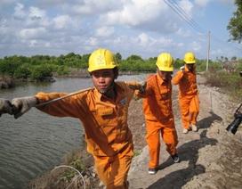 EVN mua Trung Quốc gần 1,6 tỷ kWh điện trong 7 tháng