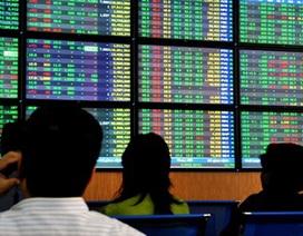Hơn 50 triệu cổ phiếu được chuyển nhượng, dòng tiền trở lại thị trường