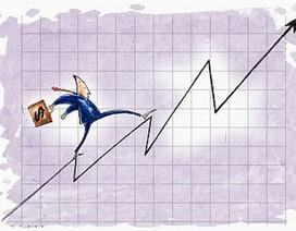 Nhóm cổ phiếu tăng mạnh nhất trong ngày đầu nới biên độ