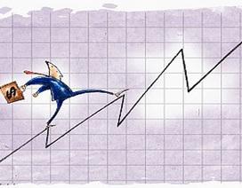 Chứng khoán chấm dứt chuỗi giảm trong ngày đầu VAMC hoạt động